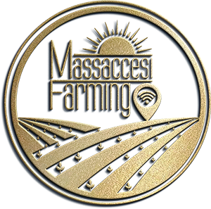 MASSACCESI FARMING